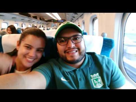 Verdolagas en el  tren bala de Tokyo a Osaka