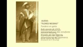 FLORES NEGRAS. Grabación de H. BRÜNING en 1923. Perú.