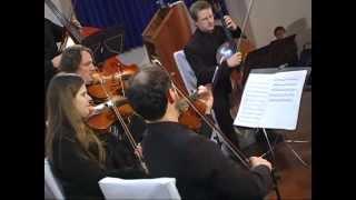 Orquestra de Câmara da Fundação Cultural de Feliz - Little Cabbage