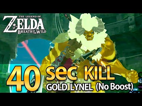 40 Sec Kill Gold Lynel (No Boost From Foods) L Zelda : Breath Of The Wild L InfinityB