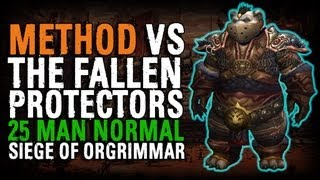 Method vs The Fallen Protectors (25 Normal)