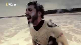 Australia's Deadliest Shark Top Documentary Films 720 HD