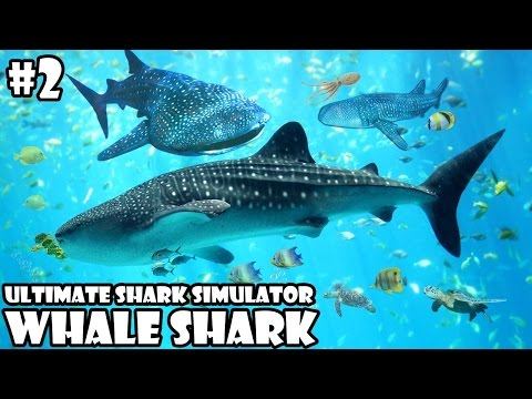 Ultimate Shark Simulator -Family Whale Shark- Android/iOS - Gameplay Part 2