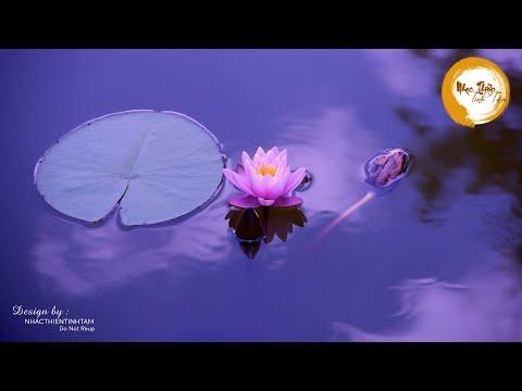 Nhạc Thiền Tĩnh Tâm - Xóa Tan Muộn Phiền ưu tư trong cuộc sống, nhẹ nhàng thư giãn