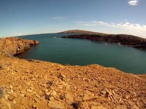 Mistralis na Caleta Hornos - Argentina