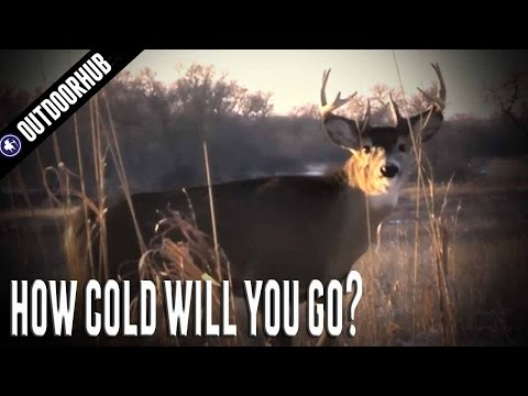 How Cold Is Too Cold For Deer Hunting