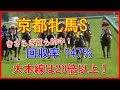 【競馬予想】京都牝馬ステークス 2018 大本線は20倍以上!