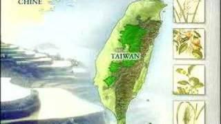 China-Taiwan Geschichte