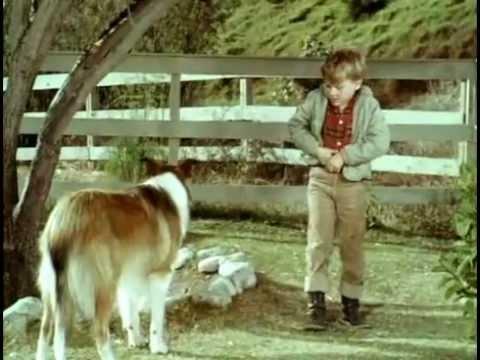 Lassie Episode 1