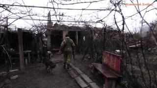 Дома в хлам после ночного обстрела Зайцево 14.03.2016