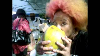 "Life in ZoiVision Webisode #6 ""Baltimore Carnivale 2012"""