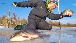 ЭТОТ БАЛАНСИР ловит ДАЖЕ КАРАСЯ Зимняя рыбалка