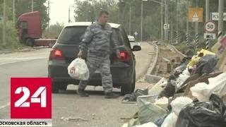 "Операция ""#свиньЯ"": как ловят тех, кто мусорит в лесах"