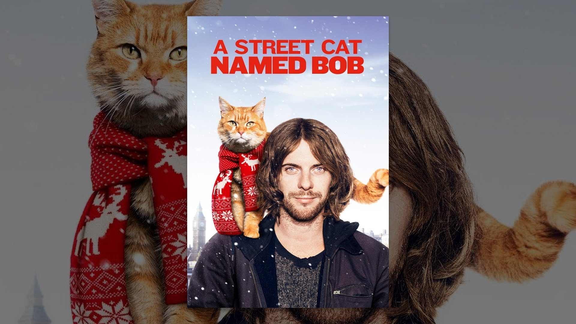 Street Cat Named Bob Watch Free