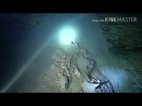 18.1.9 Palau Blue Holes -Turtle Grave - Palau Sea World