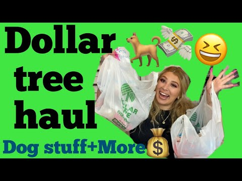 Dollar Tree Haul- Dog Stuff+More!! 🐕💸 Things I Bought At The Dollar Store