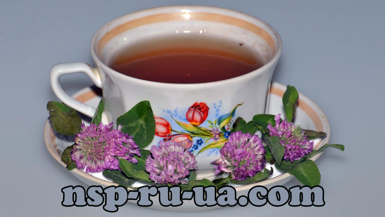 монгольский чай рецепт приготовления