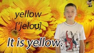 English lesson №14 Colors Урок английского языка