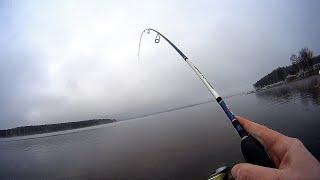 Рыбалка Окунь с Берега на Спиннинг в черте города