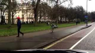 Horse on the Loose in Hyde Park!