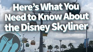 EVERYTHING You Need to Know About the Disney World Skyliner!