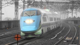 平成最後の日 とれいゆつばさも激走! 東北新幹線 雨の那須塩原駅 高速通過映像集 High speed passing through of Shinkansen