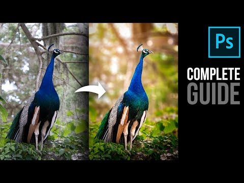 Complete Photoshop Guide: Blurring the Background and Adding Bokeh