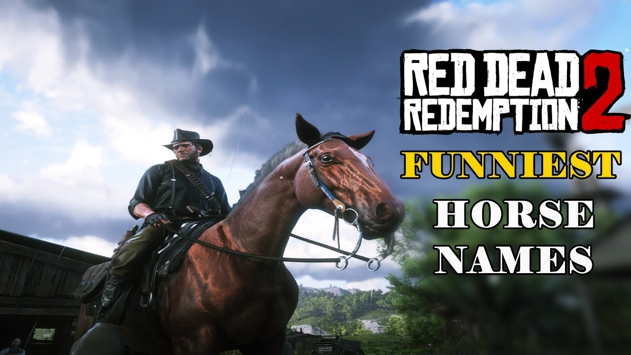funniest horse names in red dead redemption 2 youtube