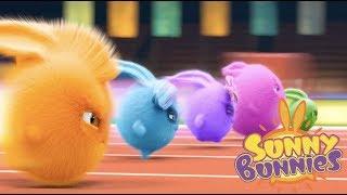 Cartoons for Children | Sunny Bunnies SUNNY BUNNIES THE BIG RACE | Funny Cartoons For Children