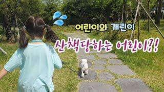 #어린이와개린이 # 산책하는강아지 # 귀여운강아지  이…