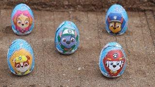 Paw patrol huevos sorpresa en arena y alberca Eggs surprise Paw patrol