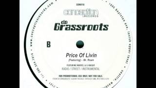 Da Grassroots-Price Of Livin (Instrumental) HQ