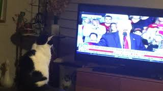 Princess Leia loves President Trump & watches him on TV