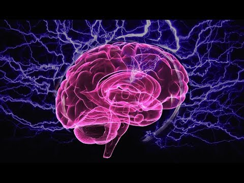 Your Brain Needs Omega-3 Fatty Acids To Function Properly