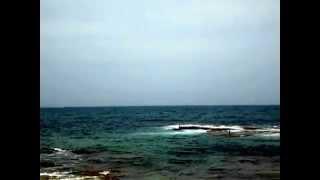 Beach St. Paul visit in Tyre (Sour) Lebanon