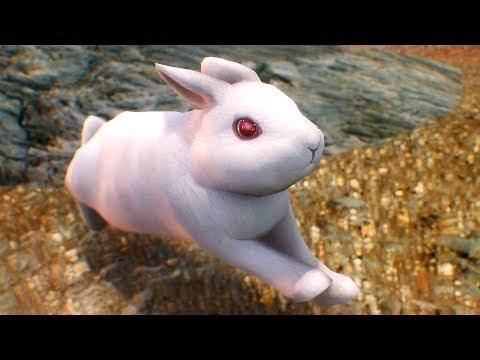 Skyrim's Bunny Saga