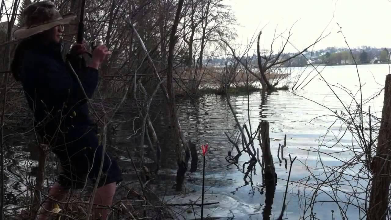 Carp fishing indian lake ma youtube for Freshwater fishing in massachusetts