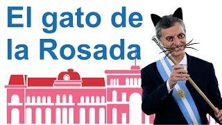 El gato de la Rosada