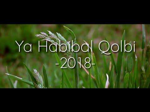 new!!-sholawat-ya-habibal-qolbi-2018