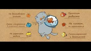 Рыбка Петушок| Содержание | Уход |