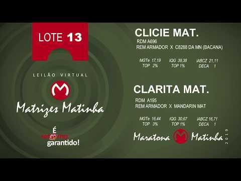 LOTE 13 Matrizes Matinha 2019