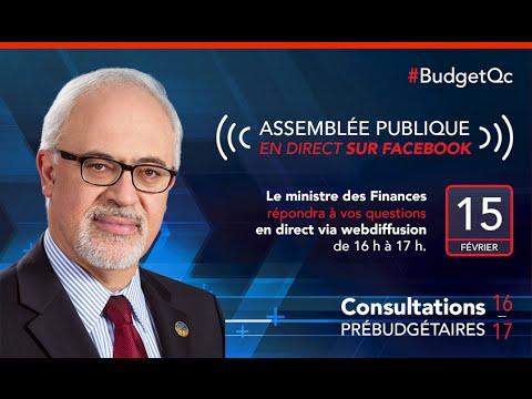 Consultations prébudgétaires / Pre-budget Consultations