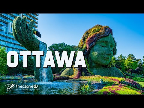 Ottawa Travel Vlog - Things to do in Canada's Capital | The Planet D