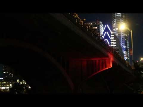 Congress Avenue Bridge Bat Colony