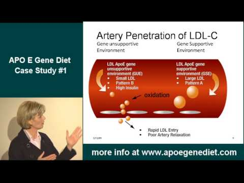 what is the the apo e gene diet