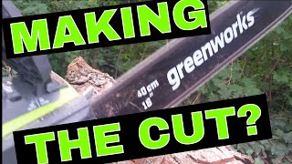 Using the Greenworks 16