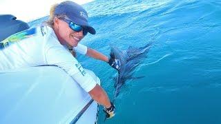 Florida Offshore Kite Fishing Video