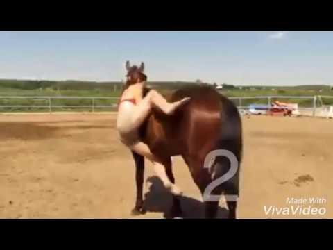 تعلم ركوب الخيل مضحك بواسطة فيفا فيديو Youtube
