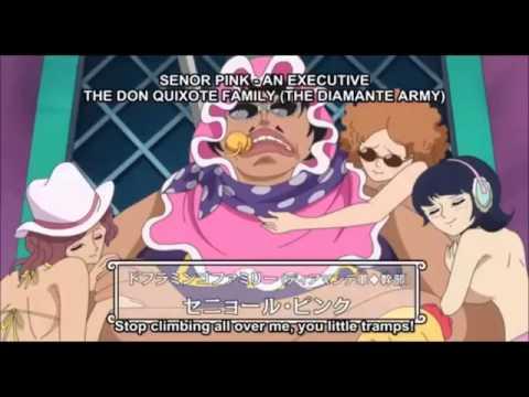 One Piece Senor Pink