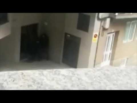 Macrooperación antidroga en Ourense